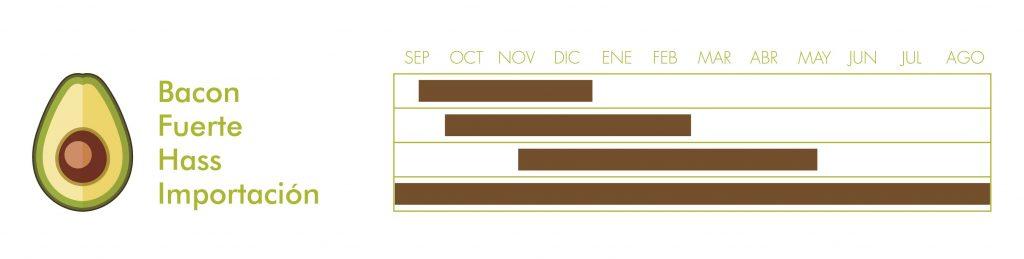 Aguacate-Calendario de Recogida