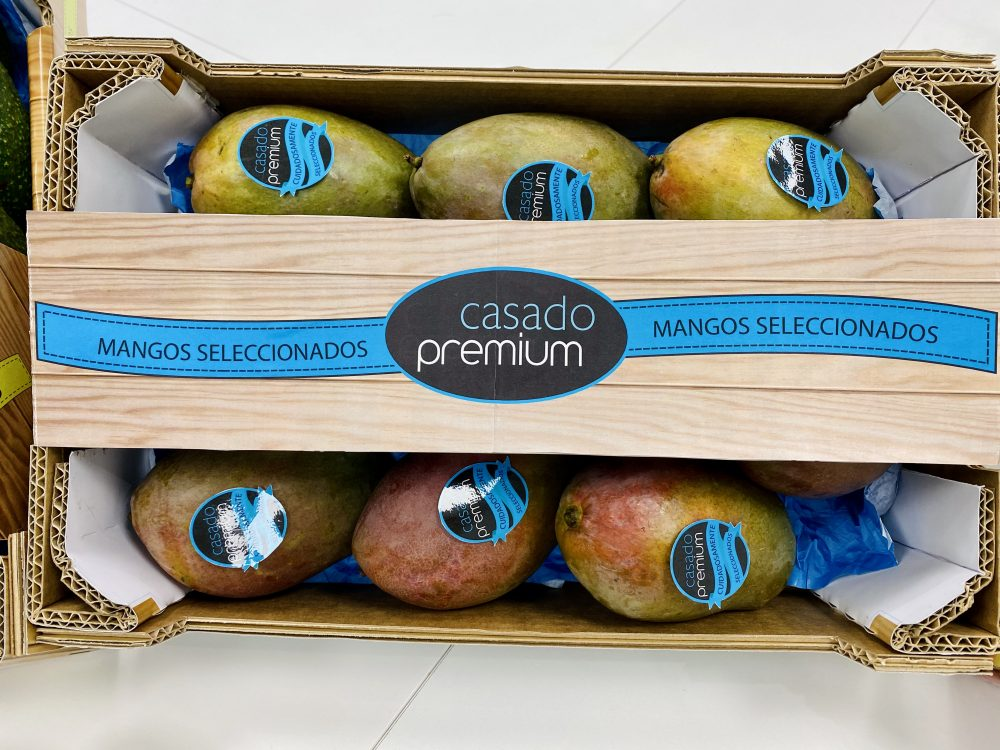 mangos Casado Premium 3